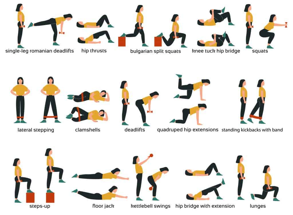 infographic of a cartoon person demonstrating different lower body muscle strengthening exercises as a visual in an article about lower body muscle anatomy for exercise.